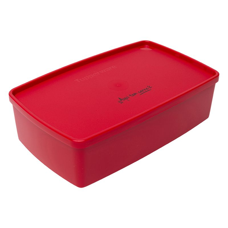 Caixa_Ideal_Carne_Tupperware_1_298